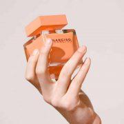 narciso-ambree